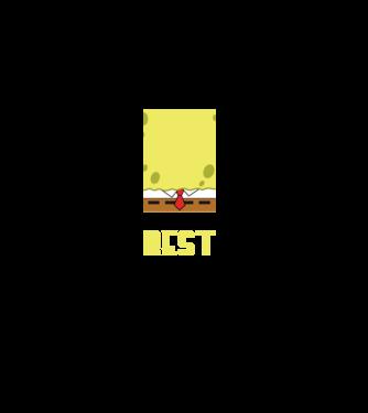 4919d818d1 Póló készítés, egyedi póló készítés Filmek és Sorozatok - Spongyabob