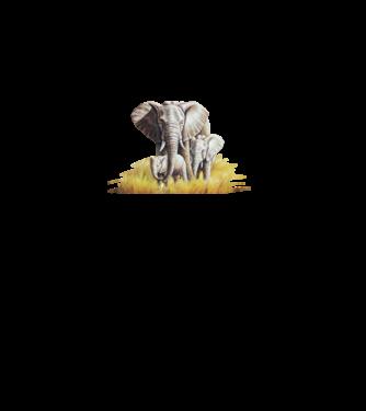 f8437f6746 Póló készítés, egyedi póló készítés Állatok és Természet - Elefánt